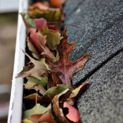 Clogged gutters filled with fall leaves  in Hurst