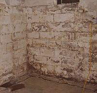 Peeling, Chipping, Basement Wall Coatings in Cleburne